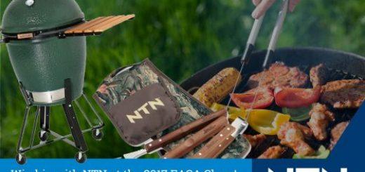 نقش شرکت NTN در تجهیزات برق EASA